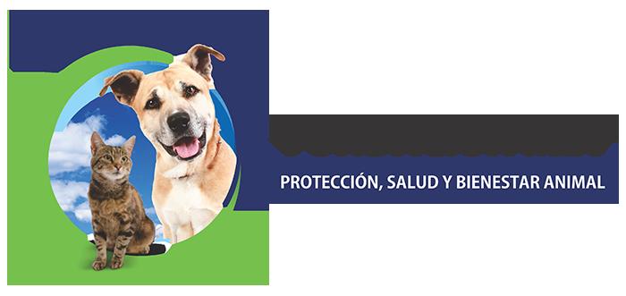 Fundación mia